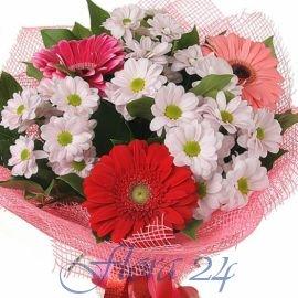 Купить цветы никополь где в зеленограде купить цветы дешево
